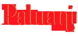 Paluani Logo
