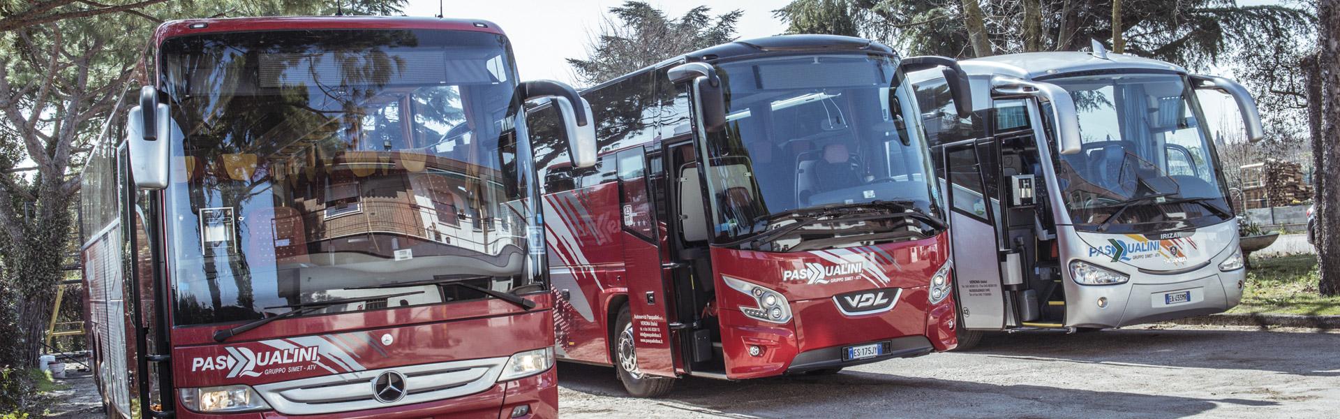 pasqualini bus - autoparco 3