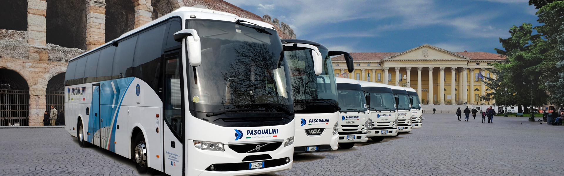 pasqualini-arena-visual-web